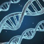 Alla fondazione Mirafiore di Fontanafredda Attilio Scienza spiega la genetica