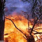 Gli incendi boschivi continuano a preoccupare l'Amministrazione regionale