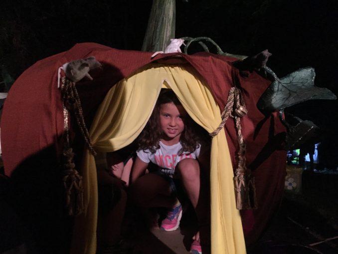 Nel bosco  fatato di Montaldo Roero con gnomi, maghi e folletti 5