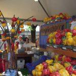 Sapori, cultura e solidarietà a Carmagnola, nel regno dei peperoni