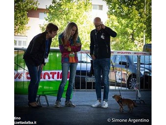 Alba dog foto Simone Argentino (4)
