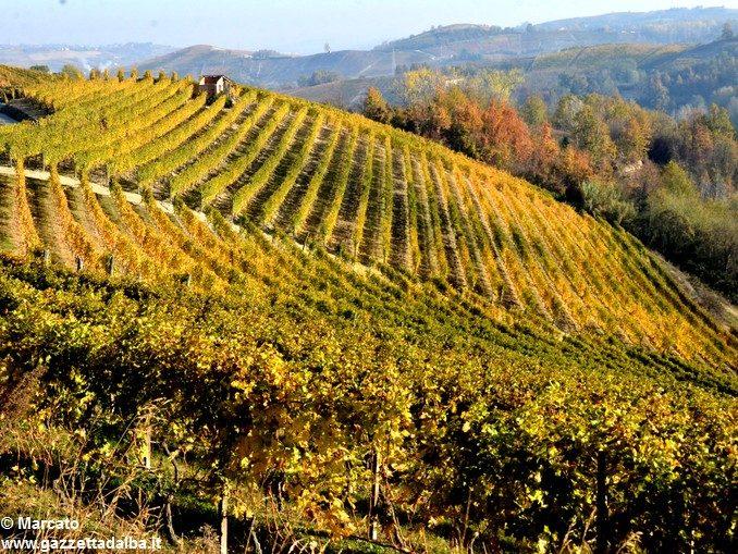 Auguri di un buon autunno a tutti i lettori di Gazzetta d'Alba 1
