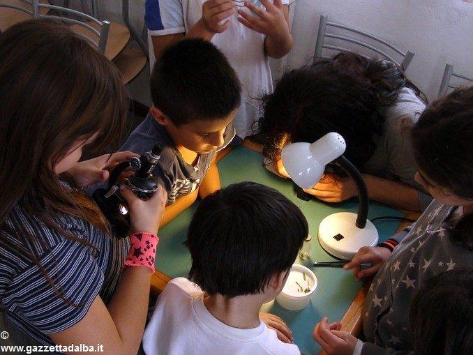 L'infinitamente piccolo si scopre sabato 23 al museo Eusebio 1
