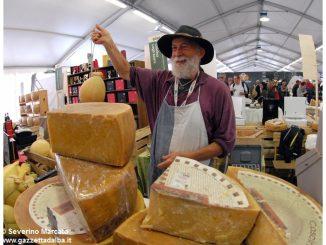 Cheese Bra 2017