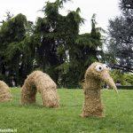 A Scaparoni domenica 10 settembre fiorirà la Land art