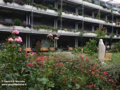 Inaugurati all'Ottolenghi di Alba un nuovo giardino verticale e sollevatori per gli ospiti 8