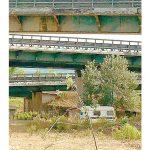 Bolla: «Controllare chi vive sotto i ponti»