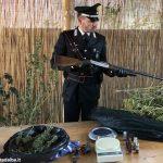 Maxi sequestro di marijuana nel paesino di Somano