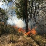 Agricoltore intossicato dal fumo mentre brucia sterpaglie