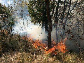 Periodo di super lavoro per i Vigili del fuoco e l'Aib di Cortemilia 5