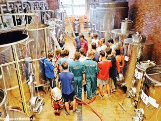Parte ad Asti il polo di ricerca  legato alla viticoltura