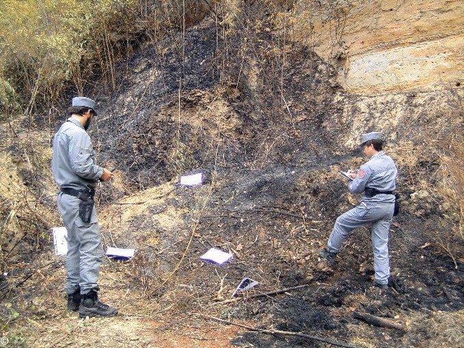 Ferrere: getta la cenere del camino a ridosso del bosco e la vegetazione prende fuoco 1