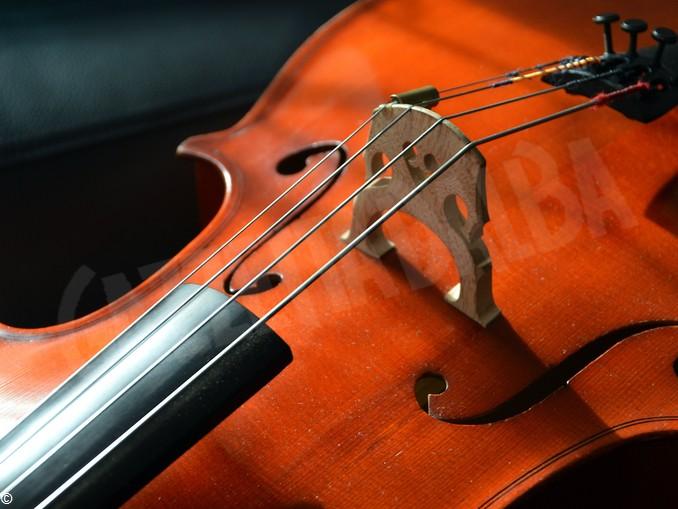 musica violoncello