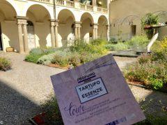 Profumo tour: dal Museo delle essenze di Savigliano al bosco del tartufo di Alba 1