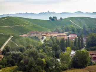 Fontanafredda è Cantina europea dell'anno per Wine Enthusiast
