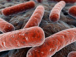 Caso di tubercolosi in una scuola del cuneese