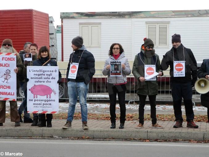 Protesta animalisti 5
