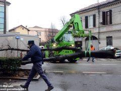 Un grande albero è crollato, ostruendo corso Michele Coppino ad Alba 7