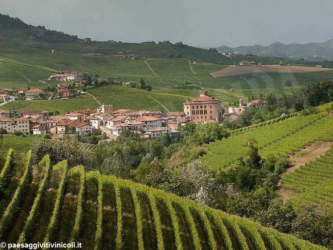 Unesco: gli incontri dell'Associazione per il patrimonio dei paesaggi vitivinicoli