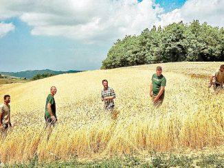 Enkir: nuova risorsa per le aree marginali