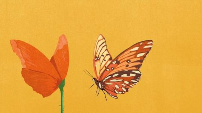 """""""Bellissimo"""", il romanzo di Massimo Cuomo, sarà presentato venerdì alla libreria San Paolo 1"""
