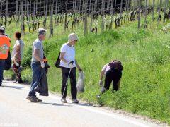 """Gli ecologisti lanciano un'altra proposta: """"Un euro un sogno"""" 2"""