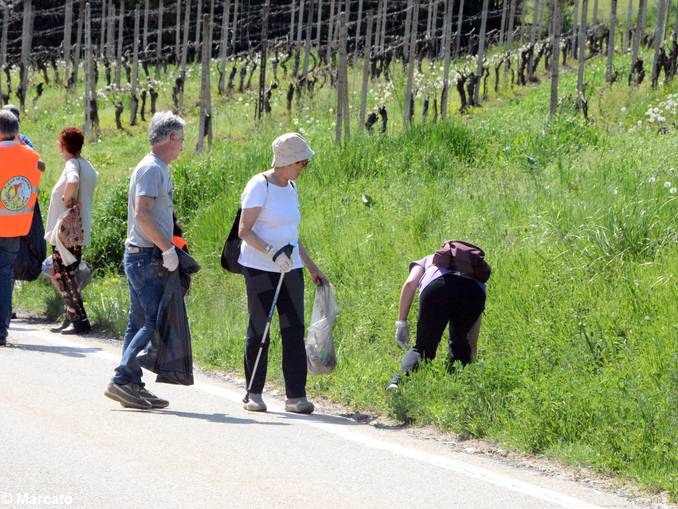 Canale ecologia pulizia strade (3)