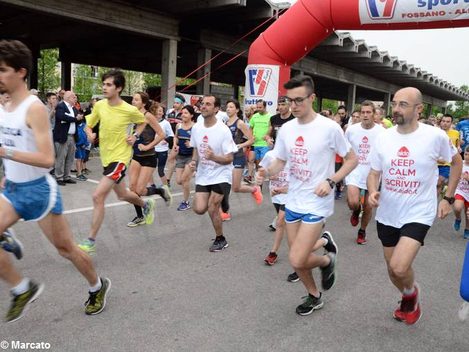 Vinum maratona Aido 1