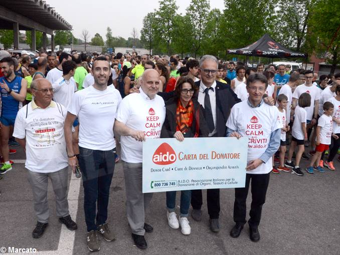 Vinum maratona Aido 4