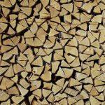 I Carabinieri forestali denunciano un uomo che aveva tagliato legna a Castello d'Annone