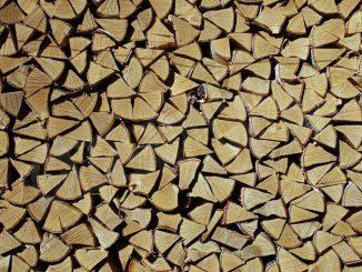 I carabinieri forestali denunciano un nuovo che aveva tagliato legna a Castello d'Annone