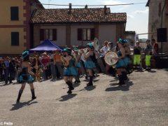Vivacissima domenica alla fiera di primavera di Priocca. Le foto 11
