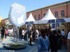 Vinum ad Alba supera ogni aspettativa: oltre 18mila biglietti venduti 13