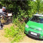Cento tonnellate di rifiuti abusivi nei boschi di Montegrosso