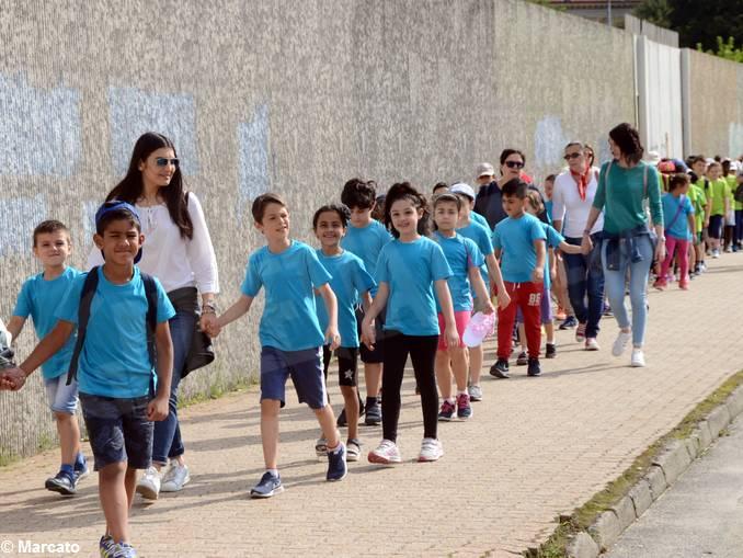 coppino blu al village (1)