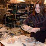 Museo Eusebio, si vedono nuove luci dal passato