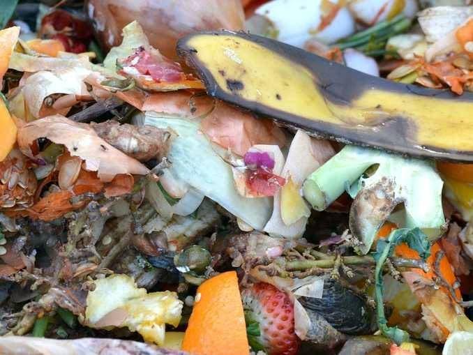Regione e aziende di distribuzione contro lo spreco e i rifiuti