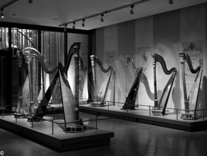 Museo Salvi