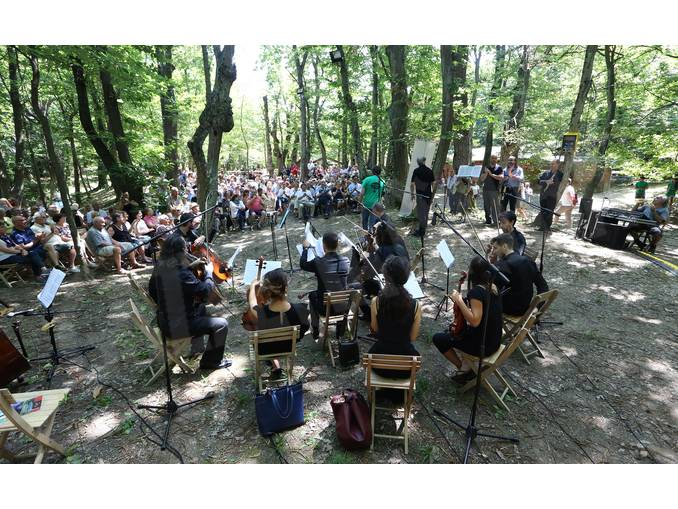 photo murialdo concerto nel bosco 7