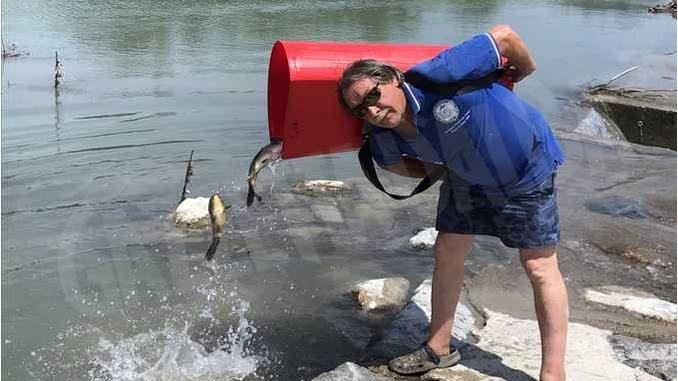 I pescatori ripopolano i fiumi con carpe e trote