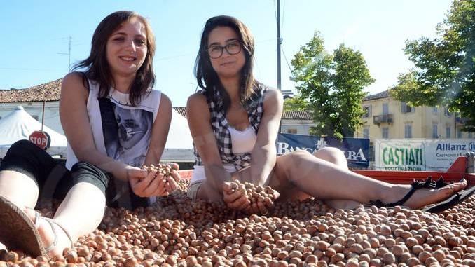 Il prezzo delle nocciole va da 300 a 330 euro al quintale