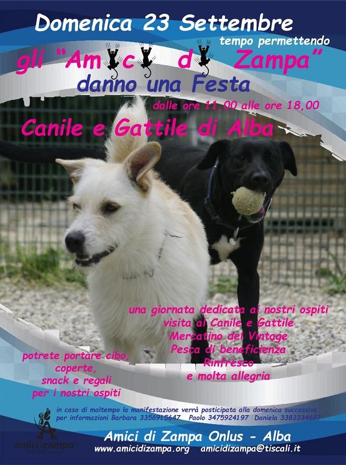 canile (1)