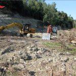 Narzole: i carabinieri forestali bloccano lavori non autorizzati di abbatimento di un bosco
