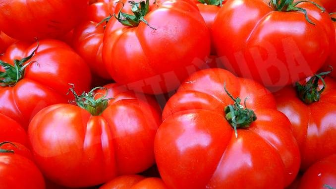 Pomodoro e derivati: è scattato l'obbligo d'origine in etichetta