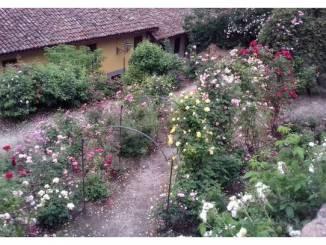 A Govone si parla di giardini, tramite vivente tra natura e artificio