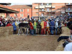 Doppia vittoria per Borgo Moretta. Ecco le foto di palio e sfilata 42