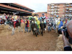 Doppia vittoria per Borgo Moretta. Ecco le foto di palio e sfilata 56