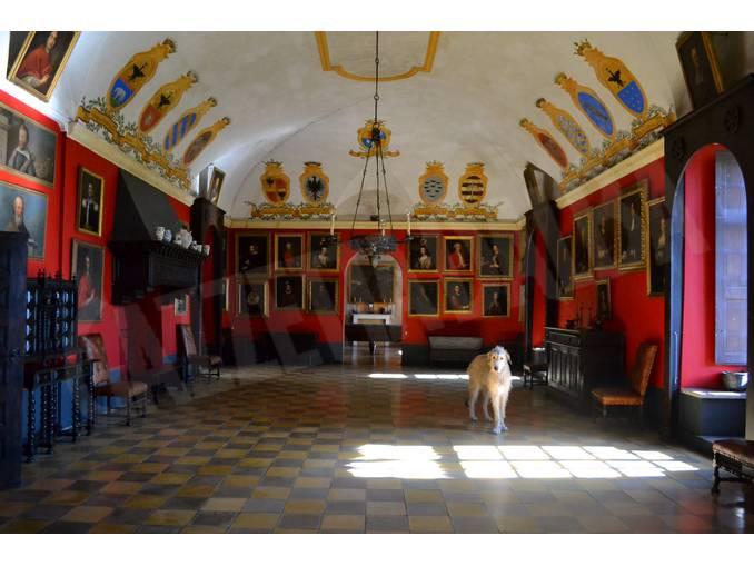 Castello di Monticello salone dei quadri