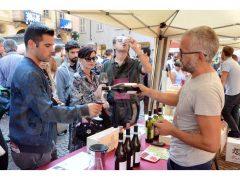 Una folla di appassionati alla 20ª Festa del vino, ecco le foto 6