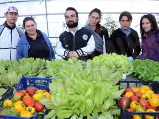 Siagri: la dignità cresce con il lavoro nel verde 4